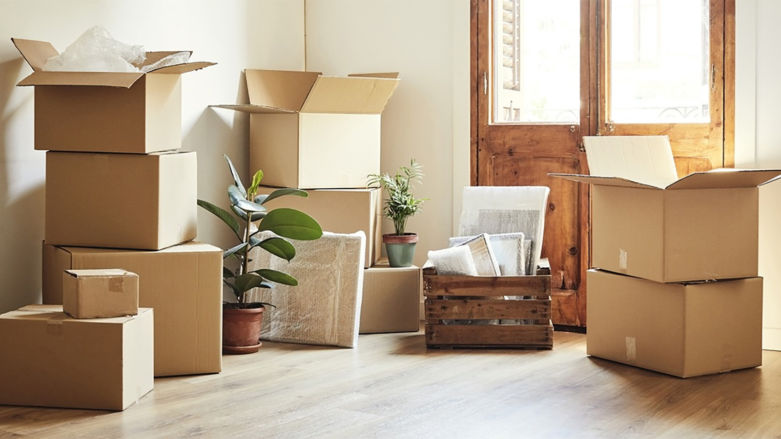Moving boxes and plants on the floor of a home.